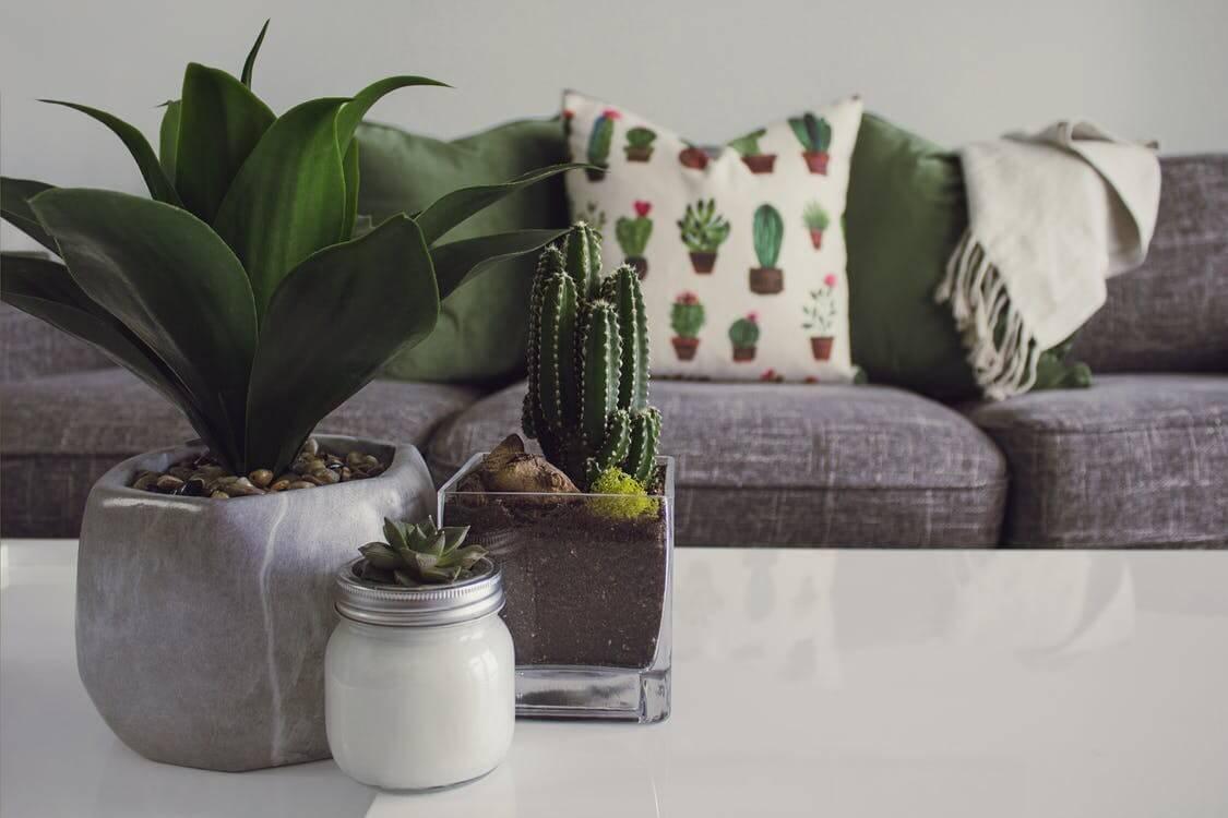 Jak odświeżyć wnętrze domu bez remontu?